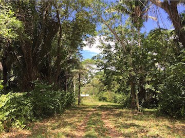 Freetown Sibun, Hattieville Village - BLZ (photo 3)