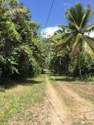 Freetown Sibun, Hattieville Village - BLZ (photo 4)