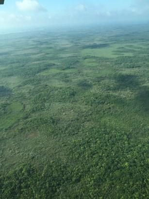 Bomba, Belize Rural North 1 - BLZ (photo 3)