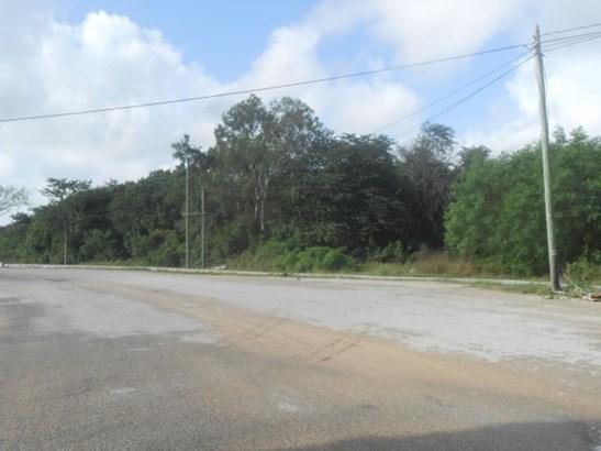 Santa Elena, Corozal - BLZ (photo 1)