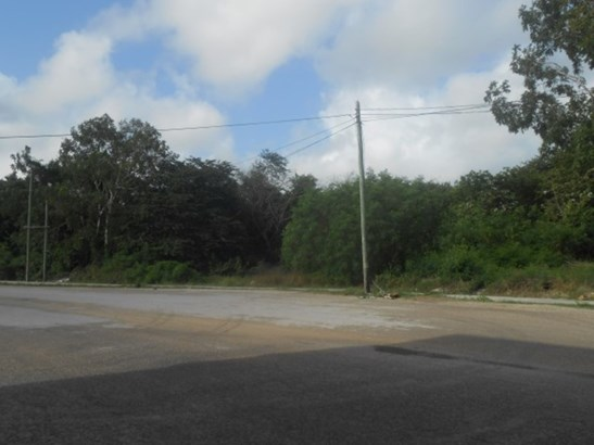 Santa Elena, Corozal - BLZ (photo 2)