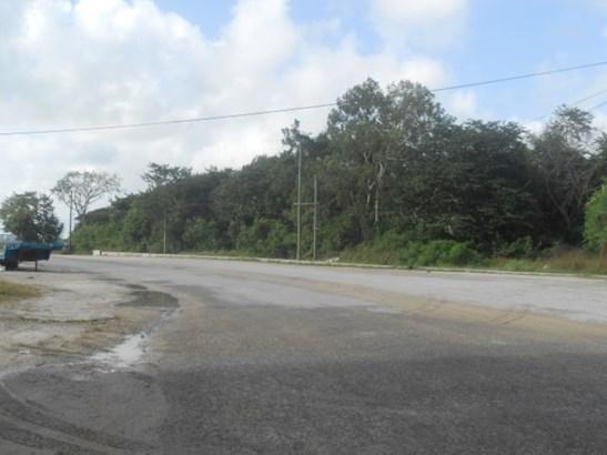 Santa Elena, Corozal - BLZ (photo 3)
