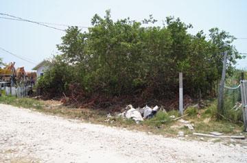 San Pedro, Ambergris Caye - BLZ (photo 2)