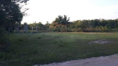 Consejo Road, Finca Solana Area - BLZ (photo 3)
