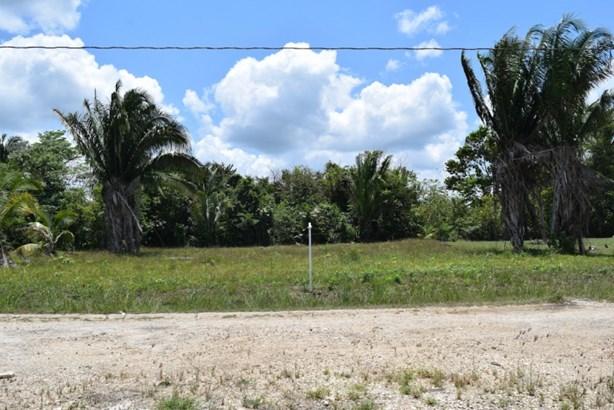 Orchid Gardens Extension, Belmopan - BLZ (photo 3)