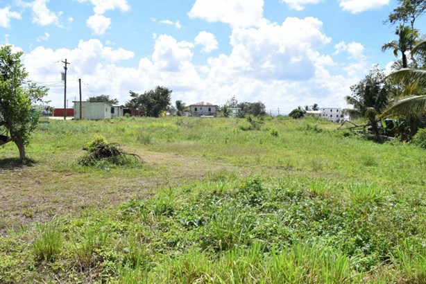 Dry Creek Street, Belmopan, Belmopan - BLZ (photo 2)
