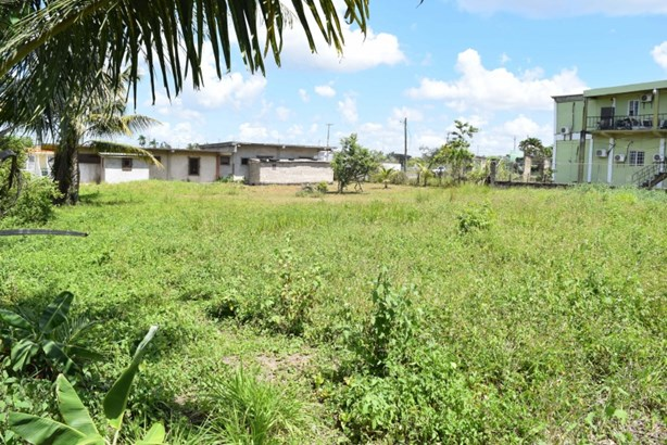 Dry Creek Street, Belmopan, Belmopan - BLZ (photo 3)