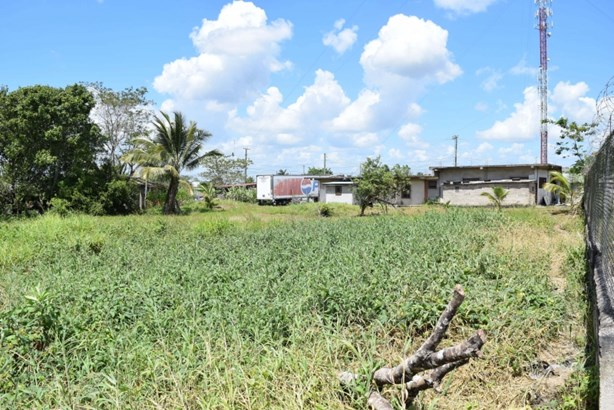 Dry Creek Street, Belmopan, Belmopan - BLZ (photo 4)