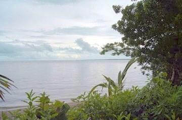 Warrie Bight, Chetumal Bay - BLZ (photo 5)