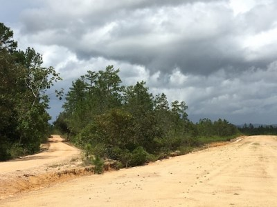 One Mile West Blancaneaux Airstrip, Mountain Pine Ridge - BLZ (photo 2)