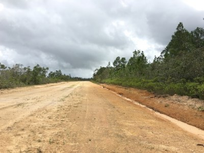 One Mile West Blancaneaux Airstrip, Mountain Pine Ridge - BLZ (photo 5)