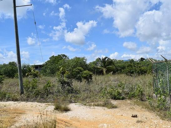 Parrotfish Crescent, Vista Del Mar, Ladyville - BLZ (photo 5)