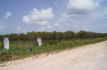 More Tomorrow Road, Cotton Tree Village - BLZ (photo 1)
