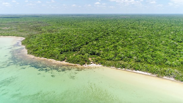 Tierra20Pristina20155020Acres20Seafront20Land20for20Sale20in20Belize20007-2.jpg