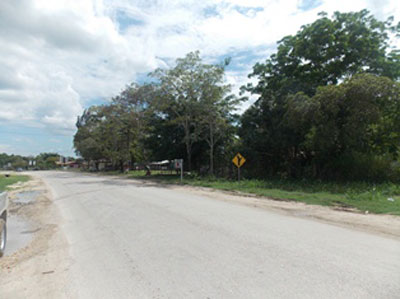 Mile 54 Philip Goldson Highway, Corozal - Orange W, Orange Walk Town - BLZ (photo 2)