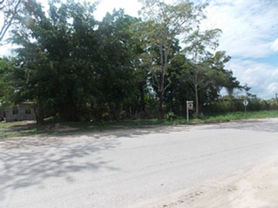 Mile 54 Philip Goldson Highway, Corozal - Orange W, Orange Walk Town - BLZ (photo 4)