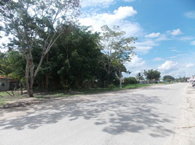 Mile 54 Philip Goldson Highway, Corozal - Orange W, Orange Walk Town - BLZ (photo 5)