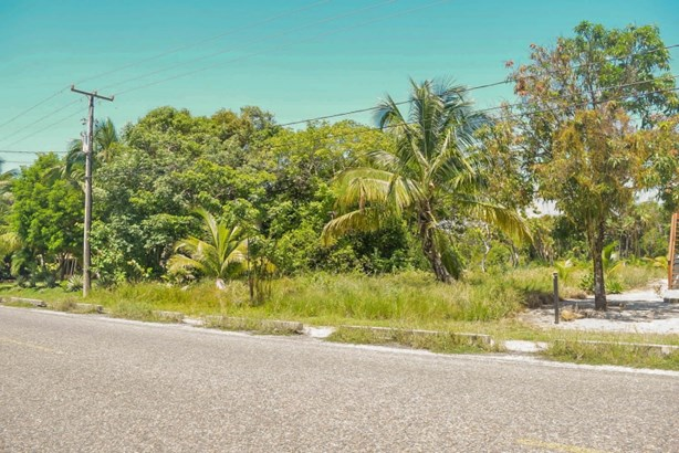 Placencia Road, Maya Beach - BLZ (photo 1)