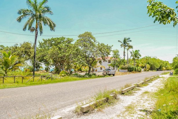 Placencia Road, Maya Beach - BLZ (photo 5)