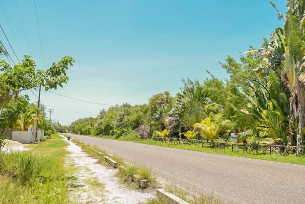 Placencia Road, Maya Beach - BLZ (photo 5)