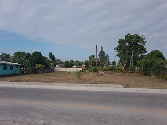 Belize Corozal Road, Orange Walk Town - BLZ (photo 1)