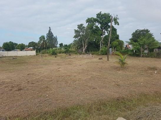 Belize Corozal Road, Orange Walk Town - BLZ (photo 2)