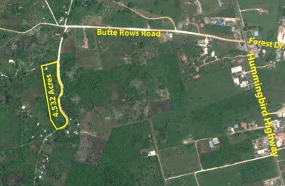 Butte Rows Road, Belmopan - BLZ (photo 2)