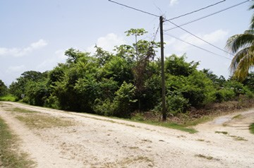 Butte Rows Road, Belmopan - BLZ (photo 3)