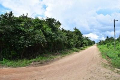 Half Mile South Of George Price Highway, Camalote Village - BLZ (photo 1)