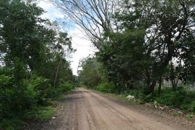 Half Mile South Of George Price Highway, Camalote Village - BLZ (photo 5)