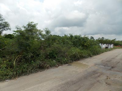 Altamira Area, Corozal North - BLZ (photo 2)