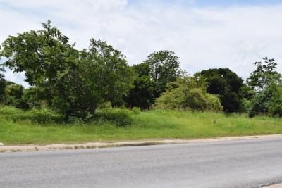 Phillip Goldson Highway, Carolina Village, Carolina Village - BLZ (photo 2)
