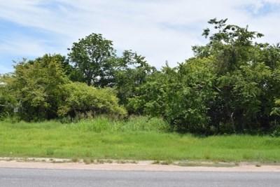Phillip Goldson Highway, Carolina Village, Carolina Village - BLZ (photo 4)