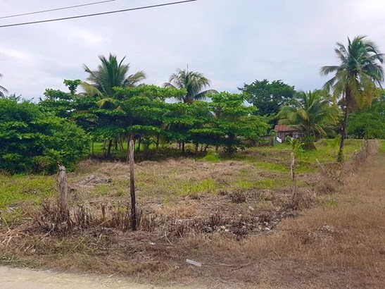 Botton Lagoon St., Trial Farm Village - BLZ (photo 1)
