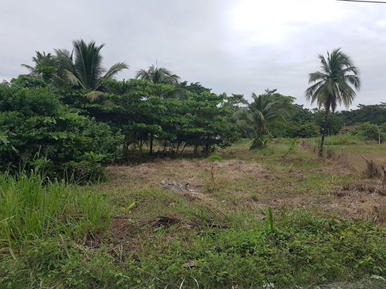 Botton Lagoon St., Trial Farm Village - BLZ (photo 3)