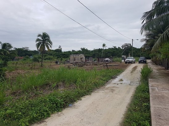 Botton Lagoon St., Trial Farm Village - BLZ (photo 4)