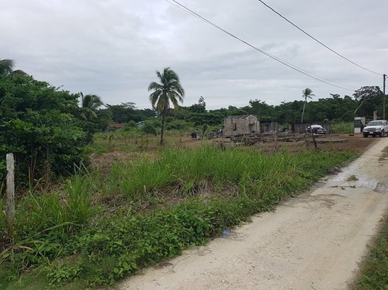 Botton Lagoon St., Trial Farm Village - BLZ (photo 5)