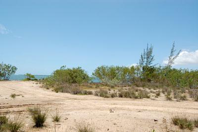 Turtle Crescent (east), Vista Del Mar-ladyville - BLZ (photo 4)