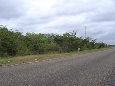 Mile 33, Philip Goldson Highway, Biscayne - Crooked Tree - BLZ (photo 1)
