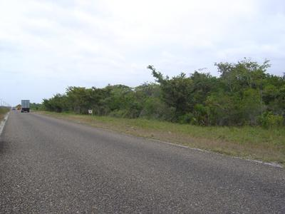 Mile 33, Philip Goldson Highway, Biscayne - Crooked Tree - BLZ (photo 3)