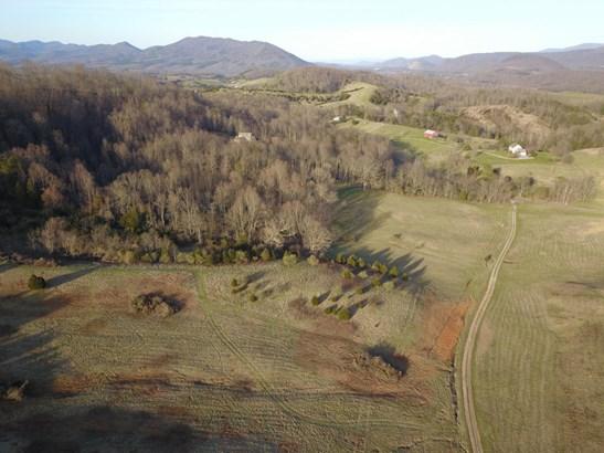 Undeveloped - Buchanan, VA (photo 3)