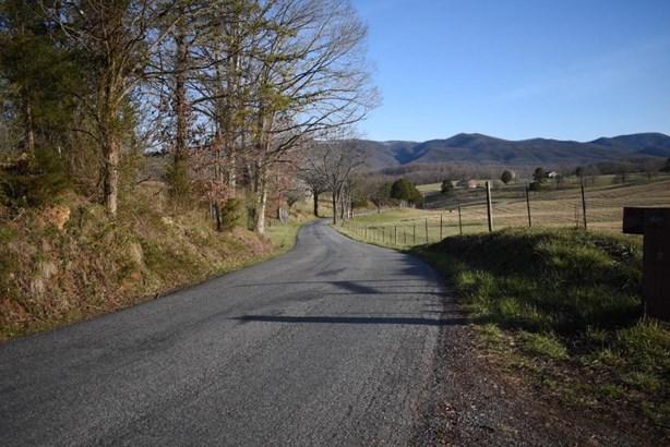 Undeveloped - Buchanan, VA (photo 5)
