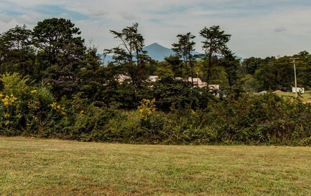 Single Family Detached, Ranch - Thaxton, VA (photo 3)