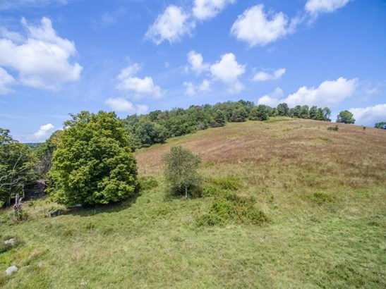 Single Family Detached, Ranch - New Castle, VA (photo 4)