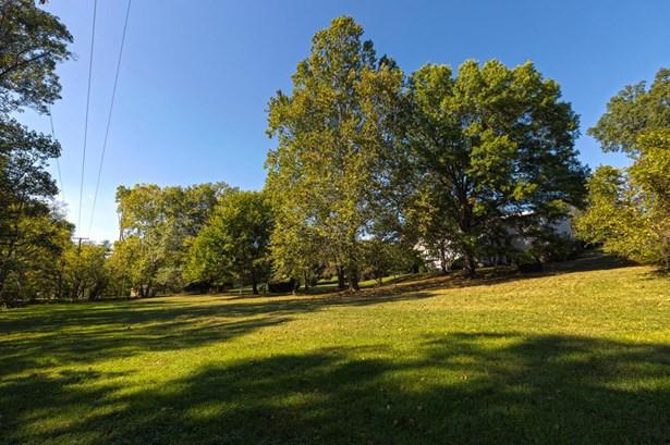 Single Family Detached - Roanoke, VA (photo 5)