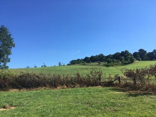 Single Family Detached, 2 Story - Troutville, VA (photo 3)