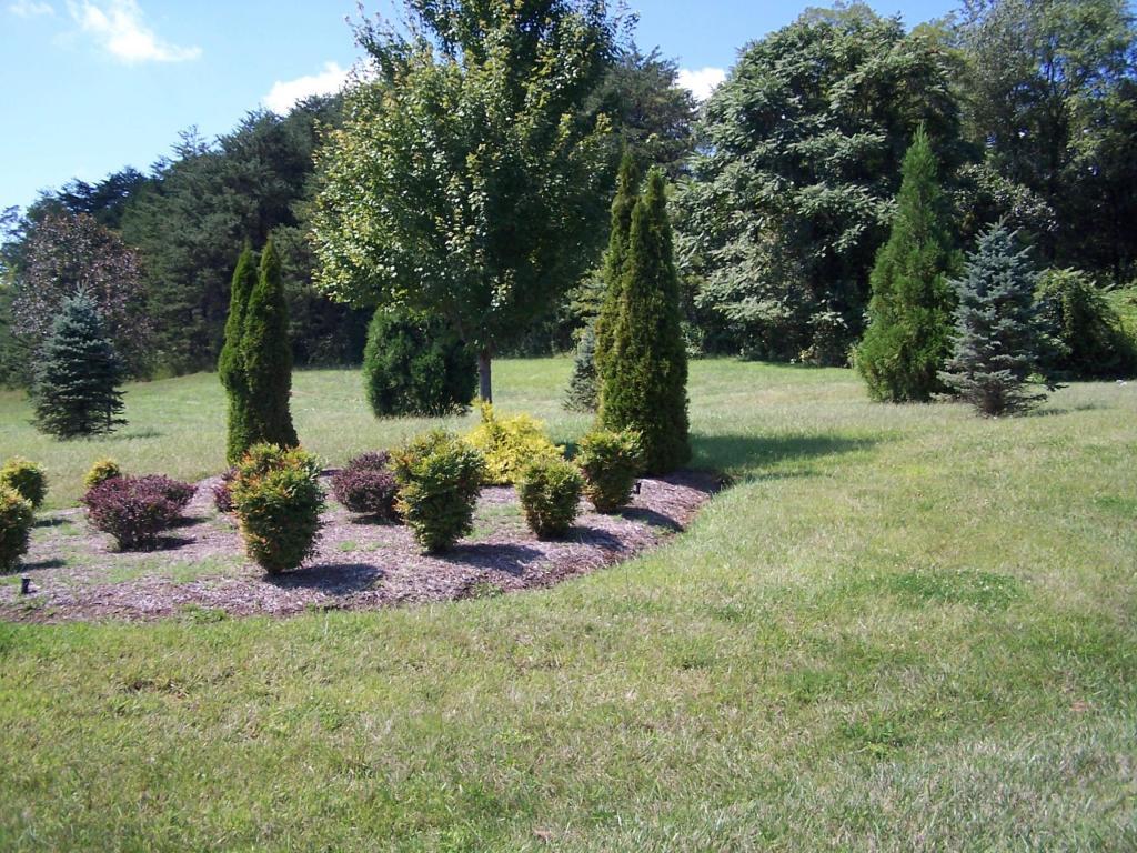 Residential - Single Family - Blue Ridge, VA (photo 3)