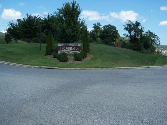Residential - Single Family - Blue Ridge, VA (photo 1)