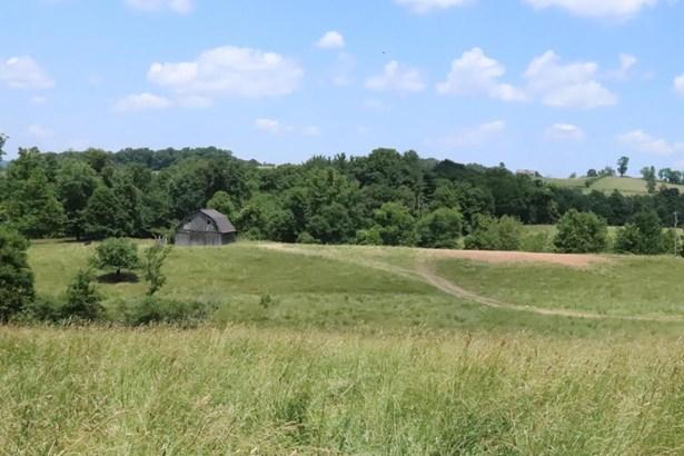 Undeveloped - Hillsville, VA (photo 3)