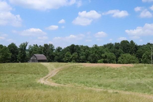 Undeveloped - Hillsville, VA (photo 4)
